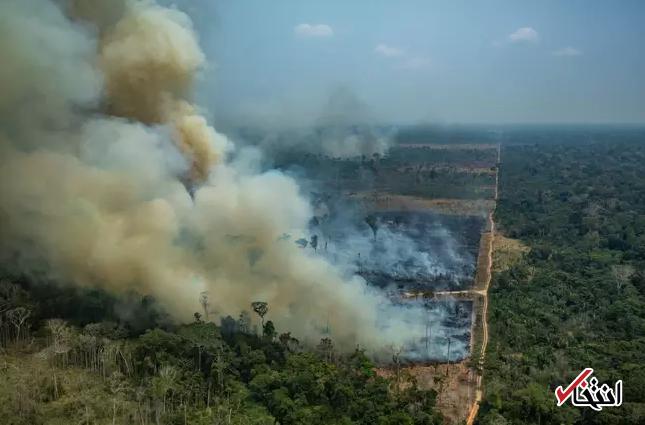نخست وزیر استرالیا: نمی توانیم به اطفاء حریق آمازون یاری کنیم ، جنگلهای آمازون در حوزه ما نیست