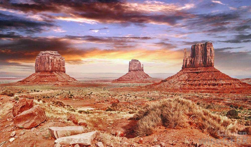 زیباترین جای جهان؛ کویر هم رنگارنگ می گردد؟ (