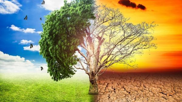 تغییرات اقلیمی، مفید یا مضر برای طبیعت؟